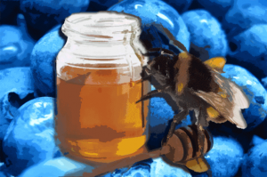 Blue_Nectar